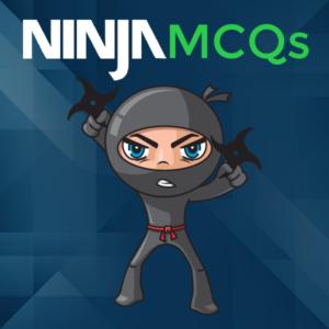 ninja-cpa-review-mcq-sims